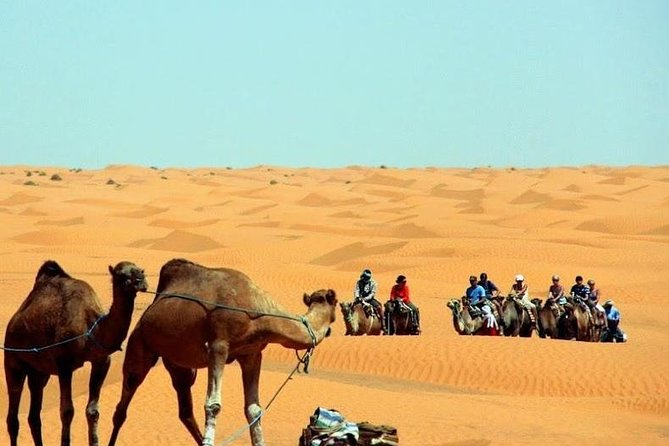 """In 2 days only you will visit two oases , two locations used in """"Star Wars"""", two types of desert including erg , two salt lakes, cave houses, Atlas Mountains and even ancient amphitheater. You will have the opportunity to ride a camel and / or quad on the dunes and swim in the pool in the 4* hotel on Sahara Desert. During this tour you will see a lot of breathtaking landscapes to let you will feel the real taste of the Sahara desert. Extra activities include camel and quad riding."""