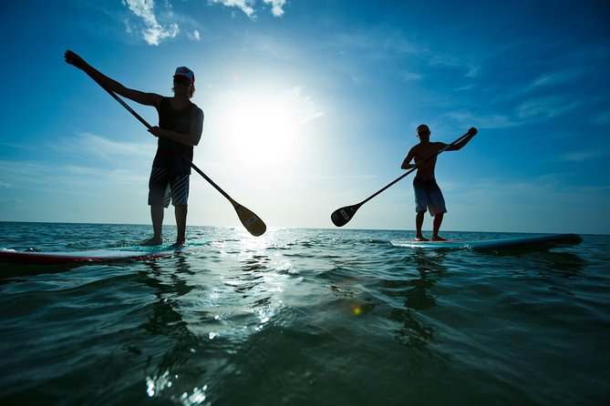 Fun, easy and scenic, paddle boarding is the best way to explore Scarborough's beautiful coastline. Join the new surfing phenomenon. Paddle boarding is a fantastic activity for both kids and adults.