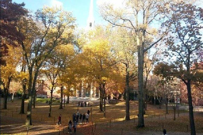 Private Small-Group Harvard Square Sunset Walking Tour, Cambridge, MA, ESTADOS UNIDOS