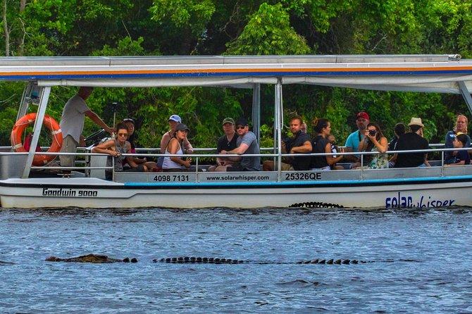 1-Hour Daintree River Crocodile and Wildlife Cruise, Port Douglas, AUSTRALIA