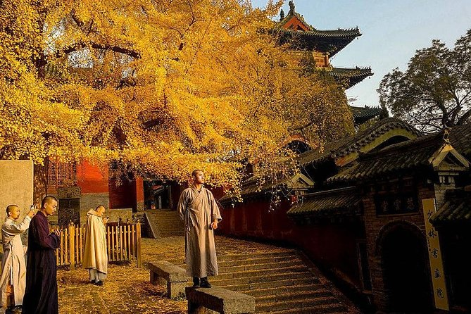 Luoyang Private Tour to Shaolin Temple including Kungfu Lesson with Master, Luoyang, CHINA