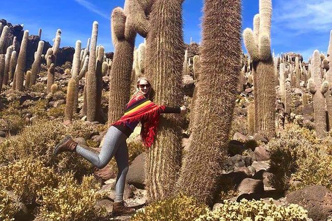Shared Visit to Uyuni Salt Flats from Sucre by Bus, Sucre, BOLIVIA