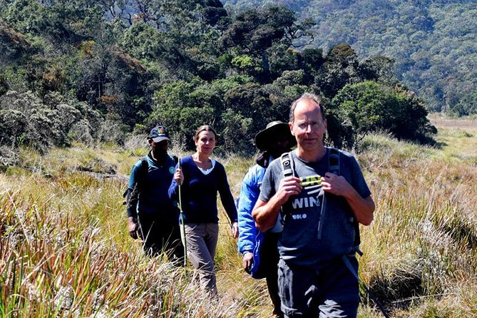 Private Hiking tour to Kirigalpoththa Mountain via Horton Plains, Nuwara Eliya, Sri Lanka