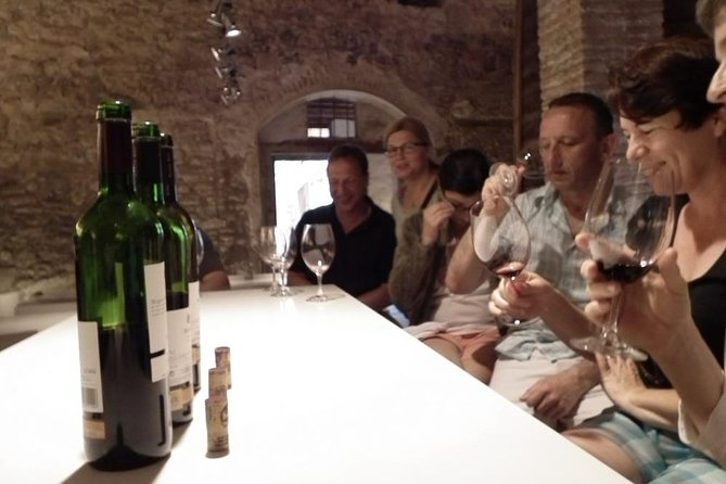 Private Wine and Oil Tour in the Priorat Wine Region, ,