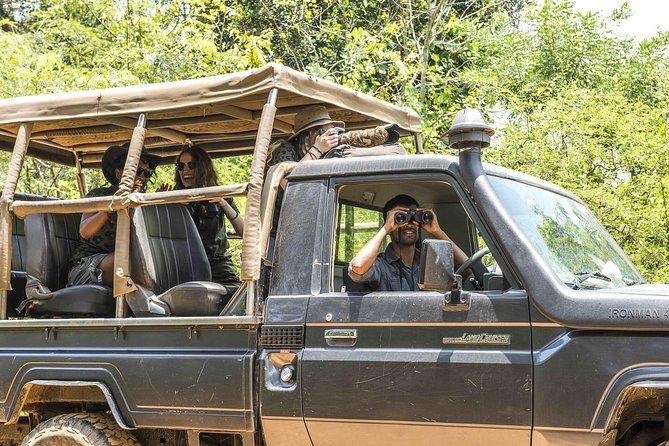 Private Half Day Safari at Yala National Park with a naturalist, ,