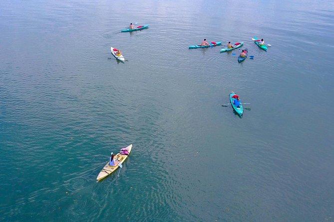 Cross Golfo Dulce living the adventure, Kayak Camping 2 Days 1 Night, Puerto Jimenez, COSTA RICA