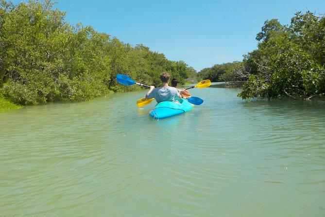 Excursión en kayak por los manglares de Isla Holbox, Isla Holbox, MEXICO