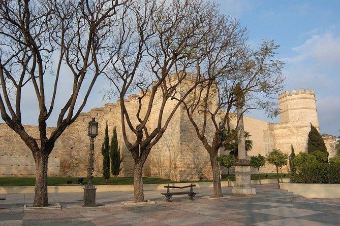 Private Tour from Cadiz: Brave Bull's Ranch and Visit to Jerez de la Frontera, Cadiz, ESPAÑA