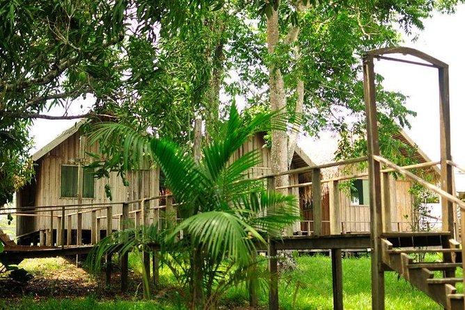 3-Day Manaus Amazon Jungle Adventure, Manaus, BRASIL