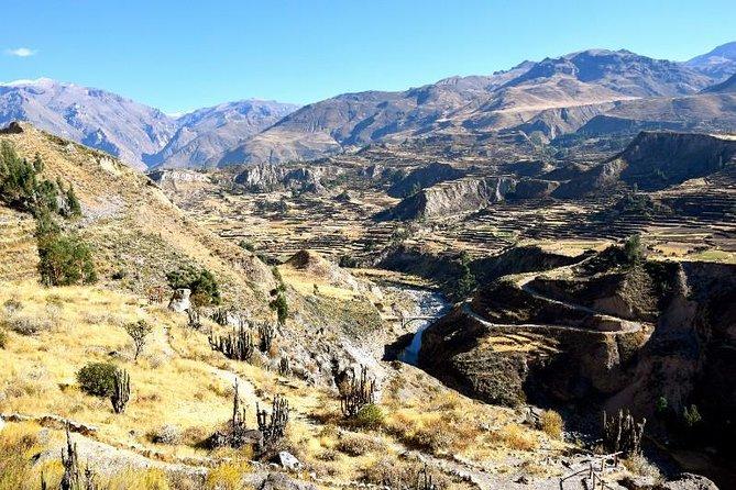 Viagem de um dia ao Colca Canyon saindo de Arequipa, Arequipa, PERU