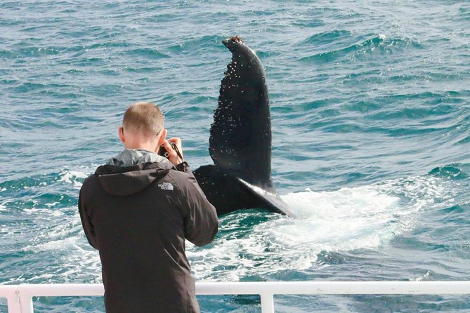 Dunsborough Whale Watching Eco Tour, Busselton, AUSTRALIA
