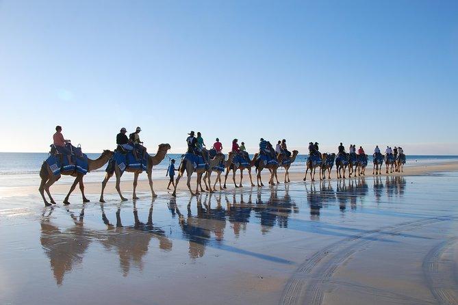 Camel ride Experience in Djerba Lagoon, Yerba, TUNEZ