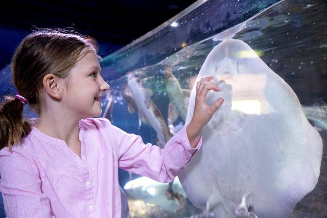 SEA LIFE Aquarium Arizona Admission Ticket, Phonix, AZ, ESTADOS UNIDOS