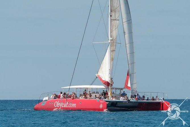 Catamaran Half-Day Cruise from Caleta de Fuste, Fuerteventura, Spain