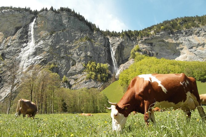 6-Hour Guided e-bike tour to Lauterbrunnen 72 Waterfalls Valley and Swiss Picnic, Interlaken, Switzerland