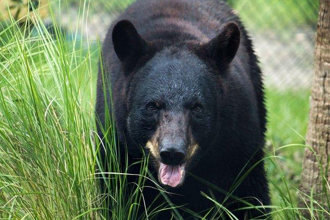 Skip the Line: Central Florida Zoo and Botanical Gardens Ticket, Orlando, FL, ESTADOS UNIDOS