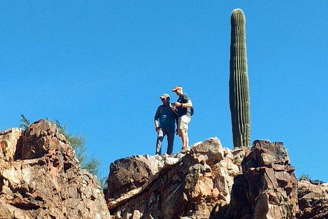 Sonoran Desert hiking /Half Day/ Meet at Trail head / 2 or more guests., Phonix, AZ, ESTADOS UNIDOS