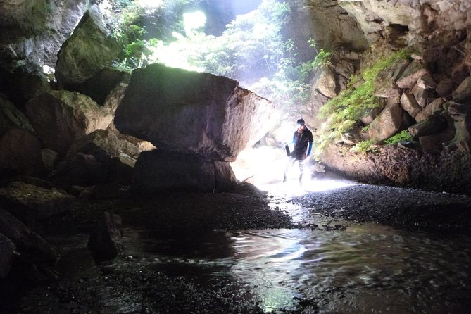 3-Hour Private Photography Tour in Waitomo Caves, ,