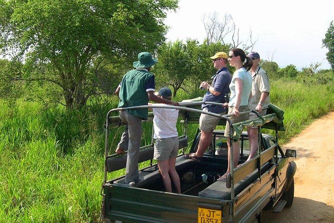 MÁS FOTOS, Udawalawe National Park Half Day Game Drive