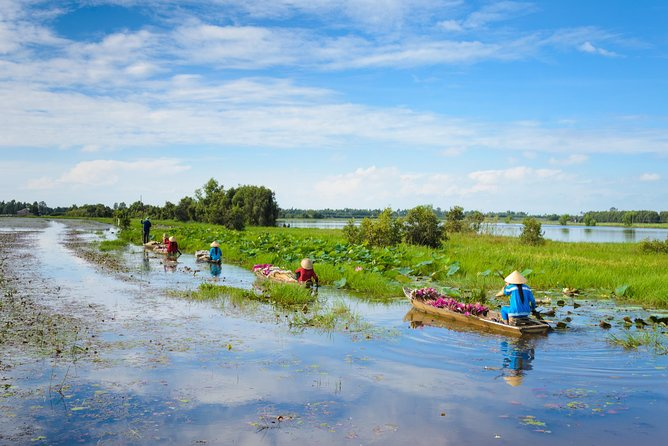 Mekong Delta Guided Tour from Ho Chi Minh city with Vinh Trang Pagoda & Lunch, Ho Chi Minh, VIETNAM