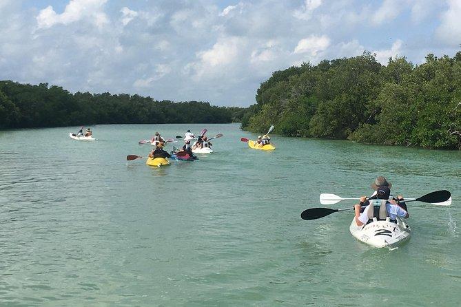 Remando por los canales del manglar, Isla Holbox, MEXICO