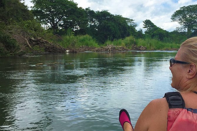 Private Sloth Encounter Waterfall And Corobici Floating Tour, ,