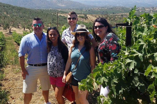 Semi-Private Full Day Wine, Olive Oil, and Cultural Tour, La Canea, GRECIA