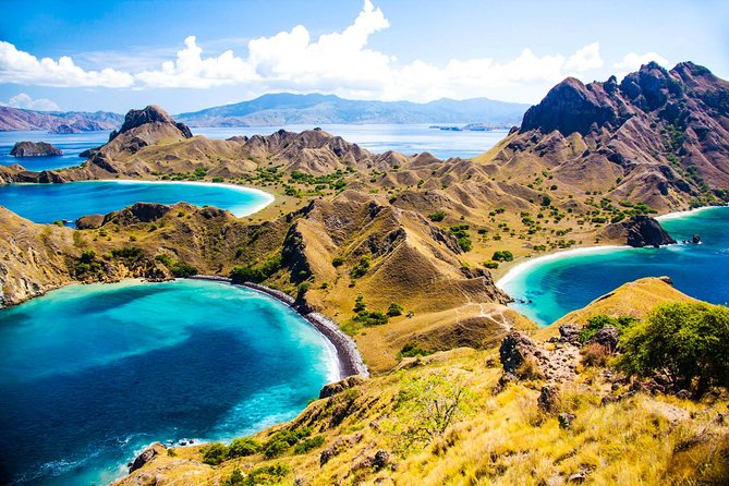 Recognized as one of the new 7 wonders of nature, Komodo National Park has gained the attention of citizens worldwide. As the gate of the most visited destination, Labuan Bajo in Flores Island, Indonesia, is about to glow, so its a must have to wrap in your Program of Indonesia trip. The westernmost city on the island, Flores is not only famous for Komodo dragons, but the manta rays, the undulating arid hills dominating secluded islands, gorgeous underwater world, and pristine waterfalls are just superb. We've picked out a list of things to do in and around Labuan Bajo so that you won't miss out on anything!<br><br>*) we are not Fully Gurantee if you can enter this Komodo national park in 2020 due to this place will be closed for temporary by Indonesia Goverment , the date of closing is not decided yet . other alternative if Komodo national Park is Visit Rinca island with the same activities as komodo national Park