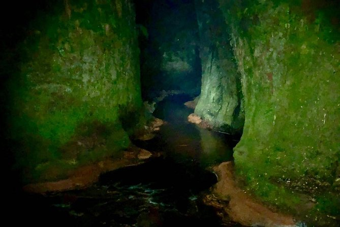 Join the Dark Side of Magical Nature, Glasgow, Escócia