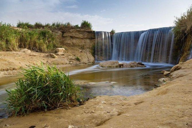 Excursión privada de día completo al oasis Fayún y las cataratas de Wadi El-Rayan desde El Cairo, El Cairo, EGIPTO