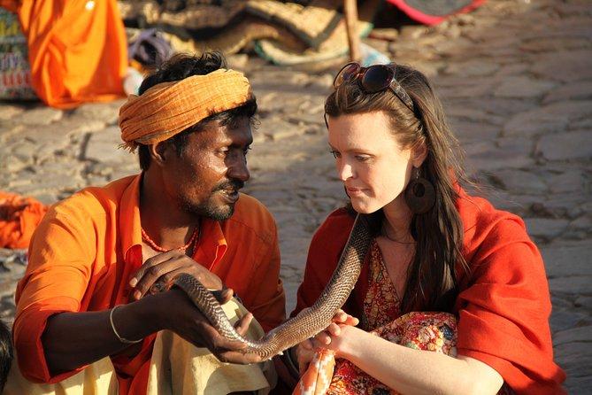 Excursión privada de 5 días al Triángulo de Oro: Delhi, Agra y Jaipur, Nueva Delhi, INDIA