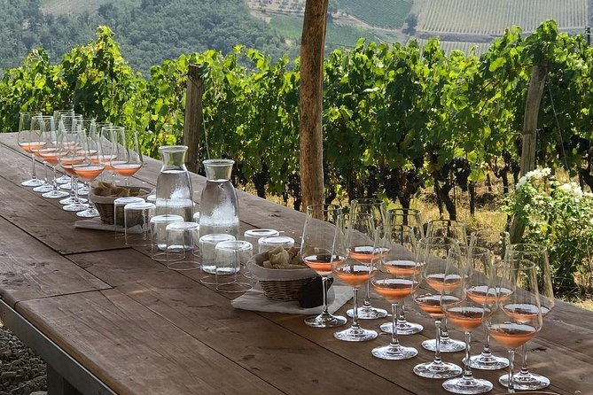 Taste of Chianti: Tuscan Cheese, Wine and Lunch from Florence, Florencia, Itália