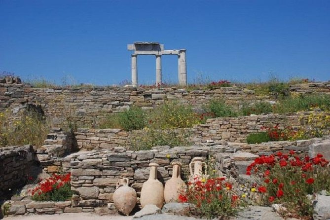 Delos Tour from Mykonos, Miconos, Greece