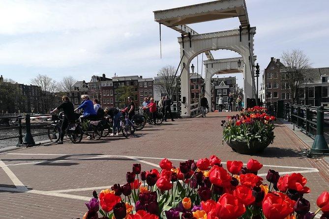 Excursão de bicicleta pela cidade de Amsterdã, Amsterdam, HOLANDA