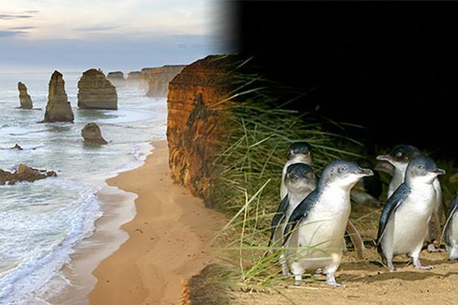 This super saver combines Victoria's two most popular destinations plus entry to a selected attraction in Melbourne City. <br><br>Take a trip to Phillip Island for your chance to get up close and personal to some of Australia's most famous wildlife including Kangaroos, Wallabies, Koalas and Little Penguins. Enjoy a visit to Churchill Island Heritage Farm to learn a little about the first settlers and farming life.<br><br>Your second tour will take you on a journey to Australia's most famous coastal drive, the Great Ocean Road. Experience the true diversity of this region as your guide takes you to some of the very best spots on your way to the world-famous 12 Apostles.<br><br>This package contains two separate day tours which depart and return to Melbourne.<br><br>Finally, choose to visit one of Melbourne's premier attractions - Melbourne Star Observation Wheel OR Sea Life Melbourne Aquarium OR Eureka Skydeck 88 with your included Melbourne Attractions Pass.