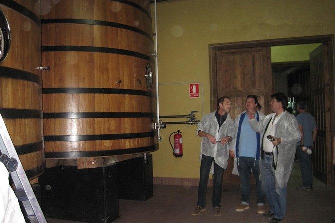Visita guiada a bodega de Ribera del Duero y cata de vinos desde Madrid, Madrid, ESPAÑA