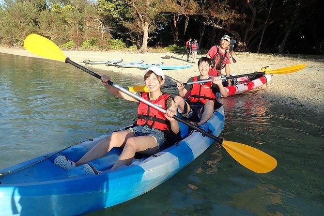 Mangrove Kayak Tour down the Ishigaki Nagura River, Ishigaki, JAPAN