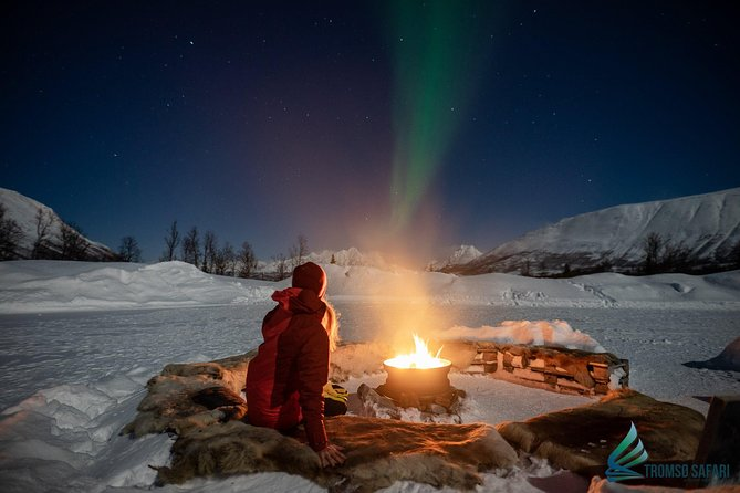 Lapland Northern Lights Tour from Tromso, Tromso, NORUEGA