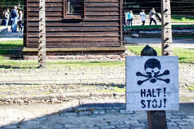 Auschwitz-Birkenau Tour with 4 Travellers, Oswiecim, Poland