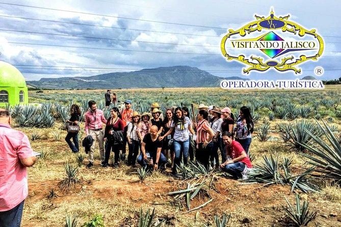 Tour de Tequila, Ruta del Tequila, Guadalajara, MÉXICO