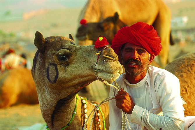 Rajasthan tour 5 days, ,