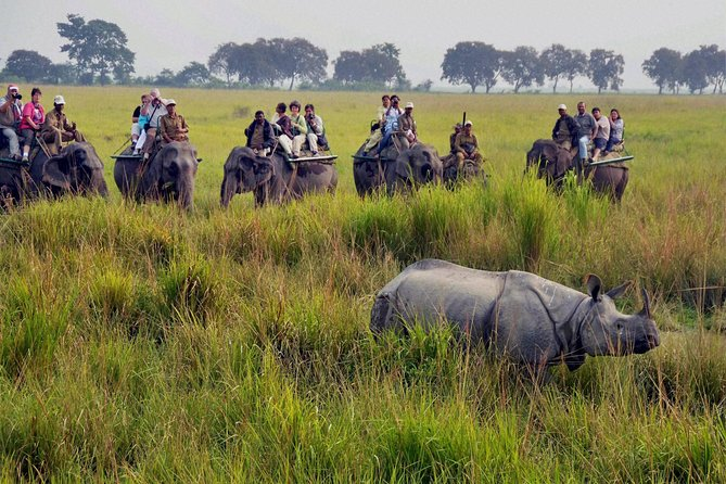 "North East Of India ( Incredible North East) <br><br>A 6 Days Private Tour: Guwahati city, visits to the Kaziranga National Park (A world heritage site) with complimentary Jungle safari. <br><br>Also visit to Shillong known as ""Scotland of East""  & Cherrapunji known as ""wettest place on earth"" in Meghalaya."