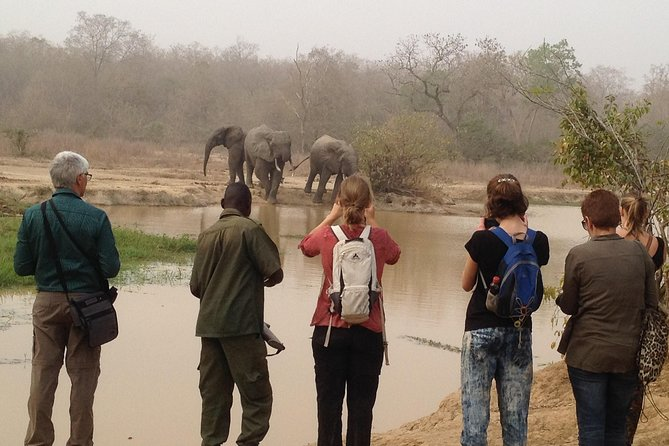 3 Days wildlife safari tour in small-group to Mole with a qualified Guide in a private car. life in tune with nature tour.