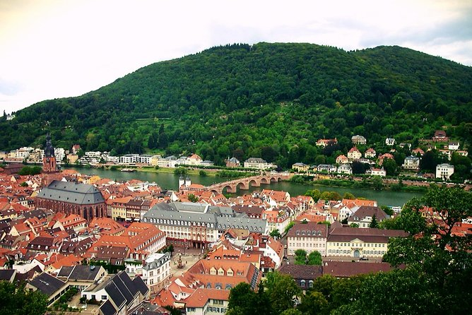Heidelberg tour with a professional guide (Including Castle visit), Heidelberg, GERMANY