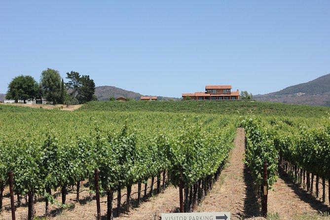 Napa and Sonoma Wine Country - Full Day Tour from San Francisco, San Francisco, CA, ESTADOS UNIDOS