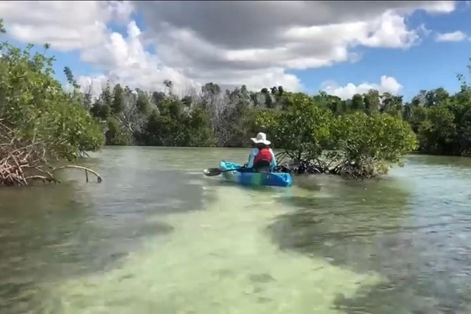A day adventure where he head out into the beautiful waters of La Parguera.  On this tour you'll take a dip in Caracoles, explore the island of Mata La Gata, and do some snorkeling in the crystal clears waters by this area.  You guide will paddle you every step of the way in this kayak and island exploring adventure.   <br><br>Or <br><br>You can go on a nighttime adventure into the waters of La Parguera's impressive mangrove and canal system as we paddle our way to an amazing bioluminescent bay during this 3 hour adventure. Hop aboard tandem kayak as you paddle through mangrove, heading to the area where surreal aquatic light show takes place. You'll see trails of gleaming light seem to emerge like magic. Our guides will educate you a little about this fragile eco system we have here in La Parguera and how visitors can help protect it for generations to come.  Your adventure also includes, life vests, kayaking gear, snacks and bottled water.