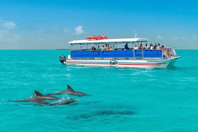 MAIS FOTOS, Key West with Dolphin Snorkel Option