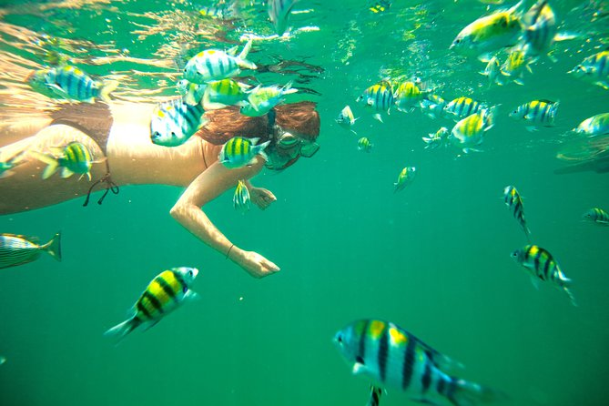 Miami: Key West with Dolphin Snorkel Tour, ,