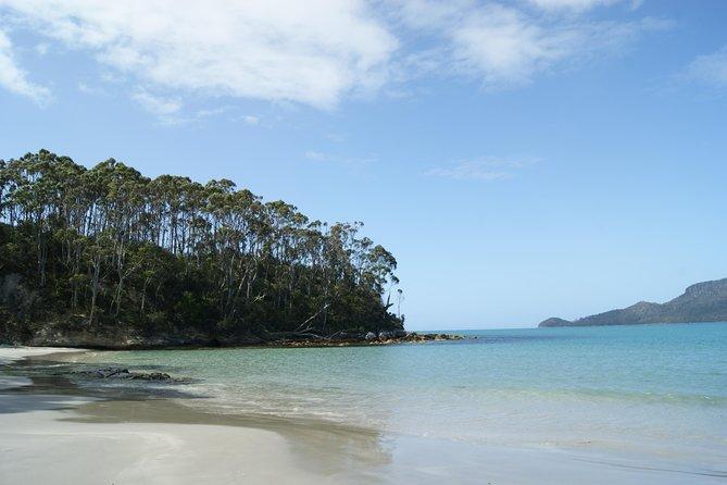 MÁS FOTOS, Bruny Island Day Trip from Hobart