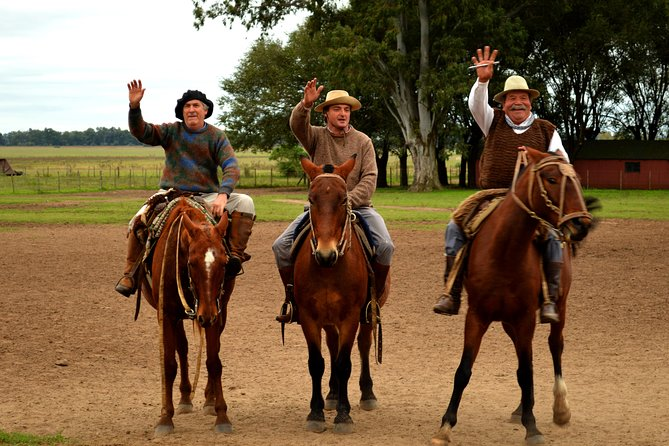 Experience a 'fiesta gaucha' (gaucho party) on this full-day tour from Buenos Aires to Estancia Santa Susana, a traditional ranch in the Argentina countryside. Loosely translated as the South American version of cowboys, gauchos are residents of the Argentina plains, and at Santa Susana, they offer a fun-filled day of ranch activities, horseback rides, a traditional folk show, a BBQ lunch, wine and a performance of their fantastic horse-riding skills.